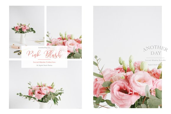 Pink Blush Flower Styled Stock Photo in Product Mockups - product preview 1
