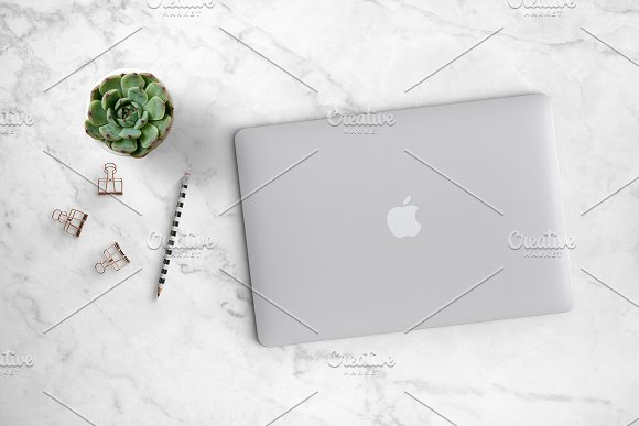 Succulent with Laptop Scene 26-0020 in Product Mockups