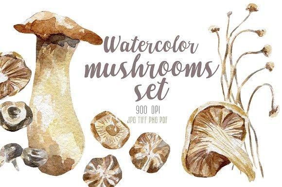 8 watercolor mushrooms set in Illustrations