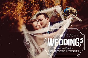 Aesthetic Wedding Lightroom Presets