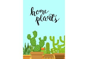 Vector illustration with cacti in pots in flat style with Home Plants lettering on plain background
