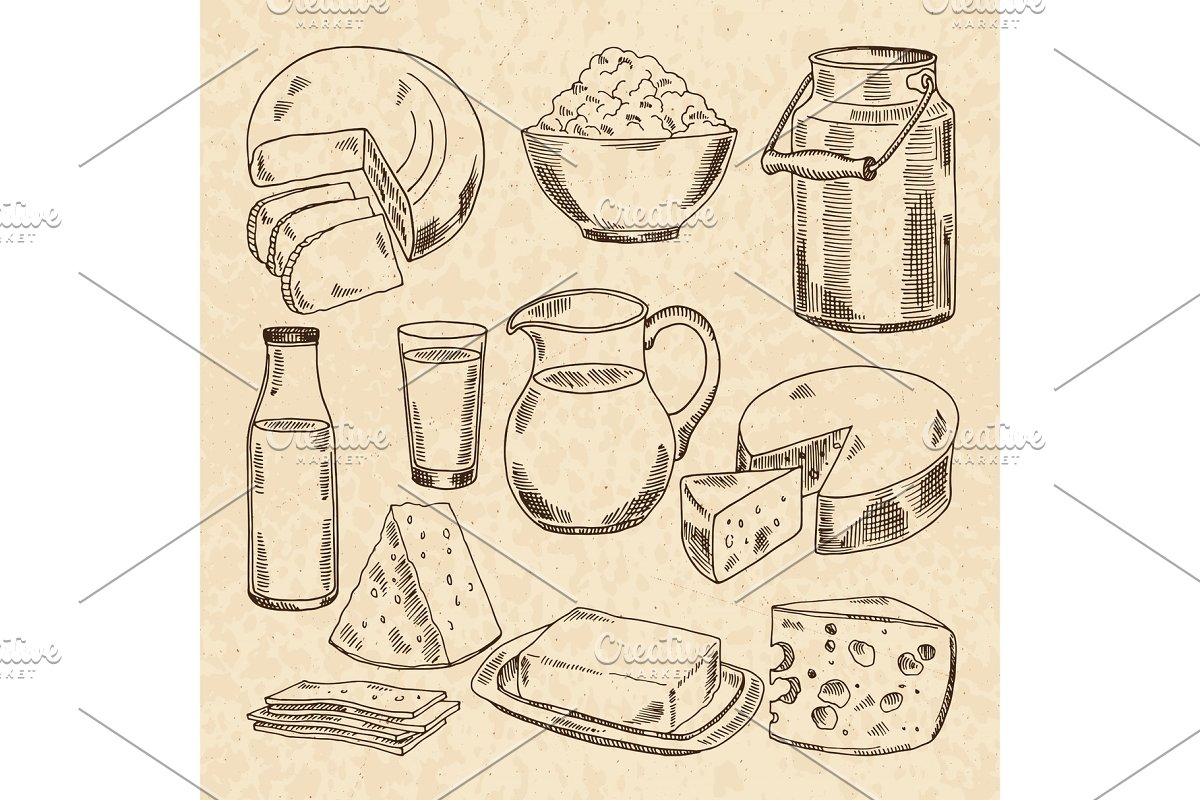 Vintage hand drawn illustrations of yogurt, cheeses and other fresh milk products