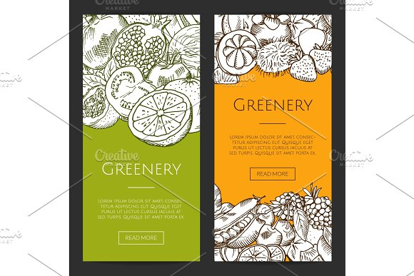 Vector doodle sketched fresh fruits and vegetables flyers, banners set