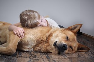 A small child and a big dog sleeping together