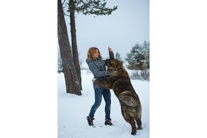 Beautiful woman playing with big Caucasian Sherpherd Dog in forest walking
