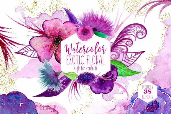 Exotic Florals Feathers