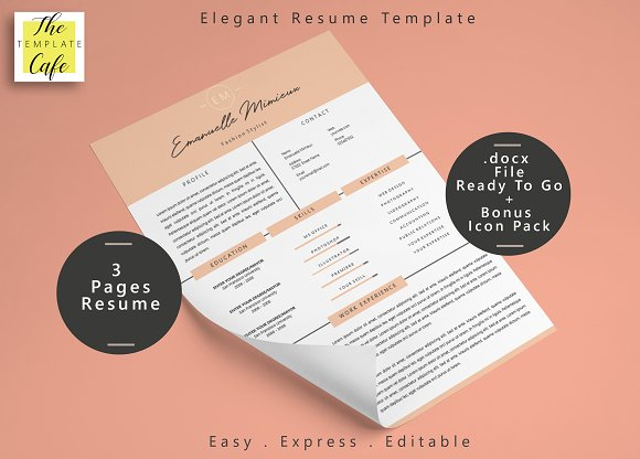 Clean Elegant Resume Template