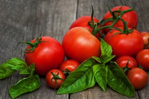 Fresh tomatoes with green basil