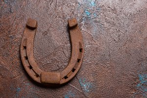 Rustic iron horseshoes