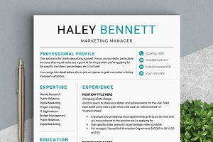 Editable RESUME Template / MS Word