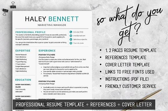 Editable RESUME Template / MS Word ~ Resume Templates ~ Creative Market