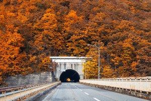 landscape and transportation concep
