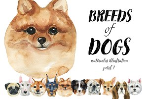 Breeds of dogs - watercolor. Part 2