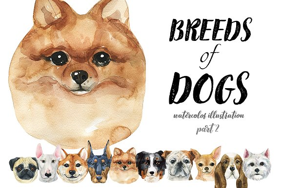 Breeds Of Dogs Watercolor Part 2
