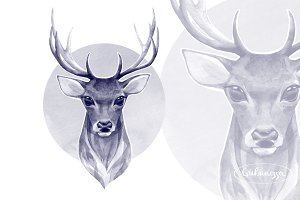 Noble deer. Monochrome watercolor