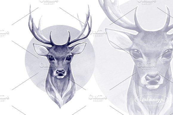 Noble Deer Monochrome Watercolor