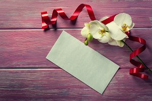 White Orchid and envelope