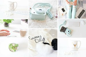 Blogger Collection - Styled Photos