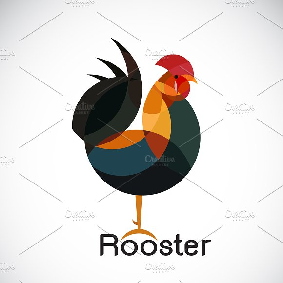 Vector Of Rooster Design Animal