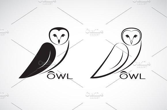 Vector of an owl design. Animal.