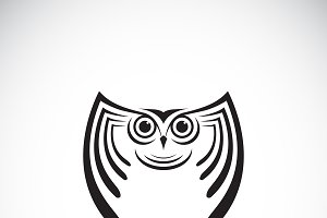 Vector of an owl design. Animal.