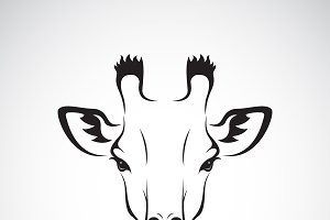 Vector of a giraffe head design.
