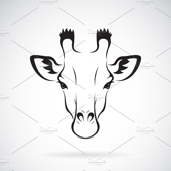 Vector of a giraffe head design.
