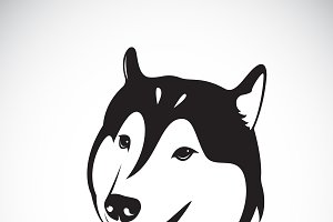 Vector of a dog siberian husky.