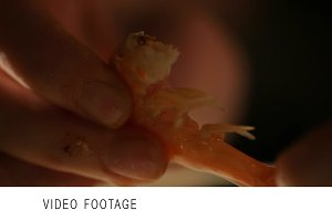 Women's hands are cleaning shrimp.