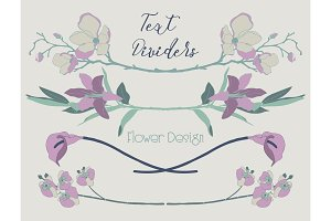 Vector Colorful Floral Text Dividers. Flower Design Elements