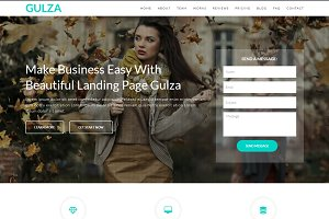 Gulza - Landing Page WordPress Theme