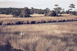 Cross in Marsh