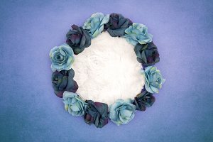Newborn Background - Blue Roses