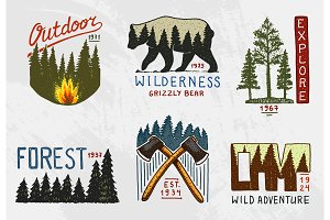 coniferous forest, mountains and wooden logo. camping and wild nature. landscapes with pine trees and hills. emblem or badge, tent tourist, brown bear, travel for vintage labels. engraved hand drawn.