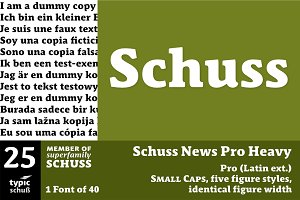 SchussNewsProHeavy No.25 (1 Font)