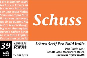 SchussSerifProBoldIta No.39 (1 Font)