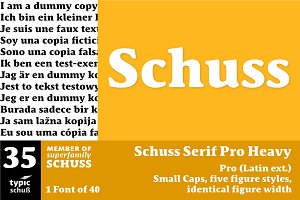 SchussSerifProHeavy No.35 (1 Font)