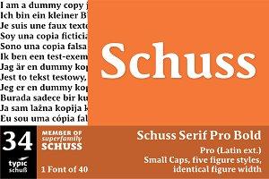 SchussSerifProBold No.34 (1 Font)