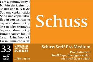 SchussSerifProMedium No.33 (1 Font)