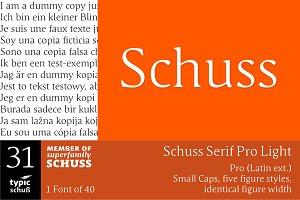 SchussSerifProLight No.31 (1 Font)
