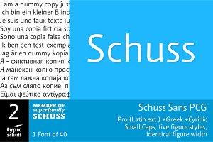 SchussSansPCG No.02 (1 Font)