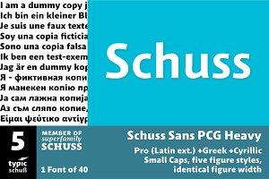 SchussSansPCGHeavy No.05 (1 Font)