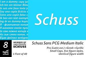 SchussSansPCGMedIta No.08 (1 Font)