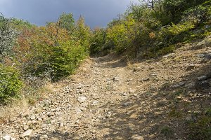 Steep descent on a dirt road