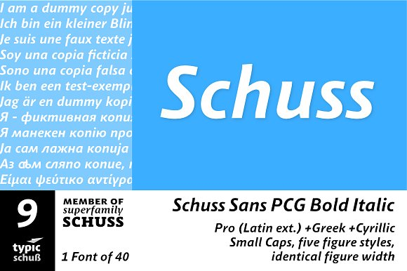 SchussSansPCGBoldIta No.09 (1 Font)