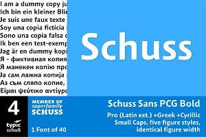 SchussSansPCGBold No.04 (1 Font)