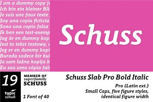 SchussSlabProBoldIta No.19 (1 Font)