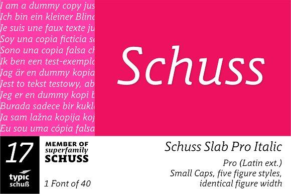 SchussSlabProItalic No.17 (1 Font)
