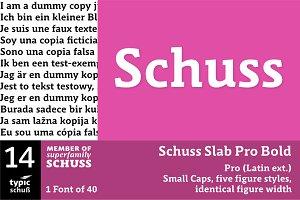 SchussSlabProBold No.14 (1 Font)