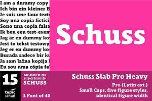 SchussSlabProHeavy No.15 (1 Font)